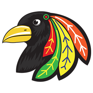 Jr Blackbirds Logo